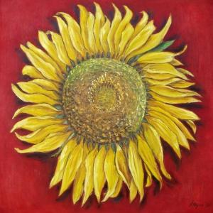 Slunečnice | 80x80cm