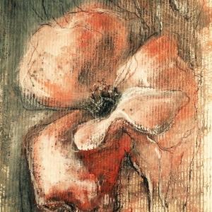 Květ máku | 30x20, akryl, papír